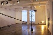 Výstava Something Small is Getting Big Krištofa Kintery v galerii slezskoostravské radnice.