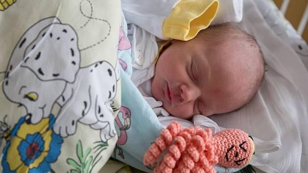 Eliška z Petrovic u Karviné, narozena 7. března 2021 v Karviné, míra 46 cm, váha 2315 g. Foto: Marek Běhan