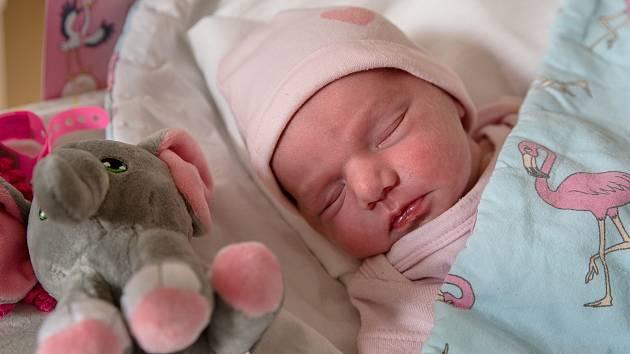 Adéla Slavičová z Petrovic u Karviné, narozena 1. dubna 2021 v Karviné, míra 46 cm, váha 2580 g. Foto: Marek Běhan