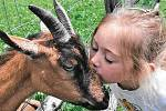 Školička na farmě: děti si užijí pečování o zvířata i rostliny