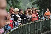 Sobotní krmení šelem se setkalo s nebývalým zájmem navštěvníků. Krmení zvířat bylo doprovázeno odborným výkladem ošetřovatelů těchto zvířat chovaných v zajetí.