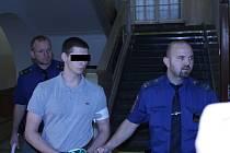 Za vraždu kamarádky byl Patrik K. odsouzen ke dvaceti rokům žaláře.