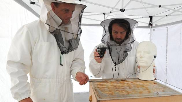 Včelař Pavel Gazda a umělec a rektor pražské AVU Tomáš Vaněk při sběru zvuku tisíců včel.