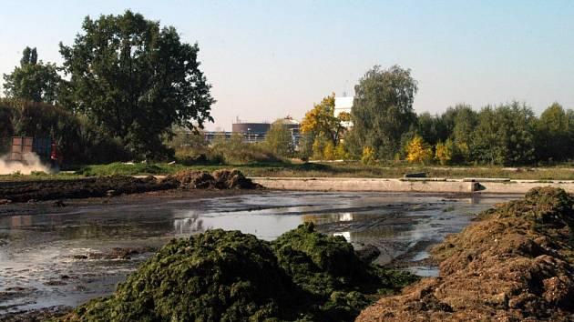 Kupka trávy skončí v přívozské kompostárně