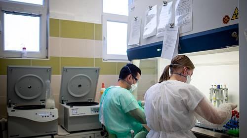 Laboratoře AGELLAB, které jako první soukromé laboratoře v republice obdržely od Státního zdravotního ústavu povolení testovat přítomnost koronaviru, 18. března 2020 v Ostravě. Denně zde vyšetří až 250 vzorků.