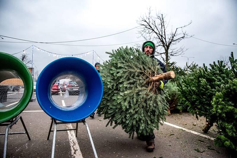 Vánoční atmosféra v obchodním centru Avion Shopping Park, 15.prosince 2018 v Ostravě.