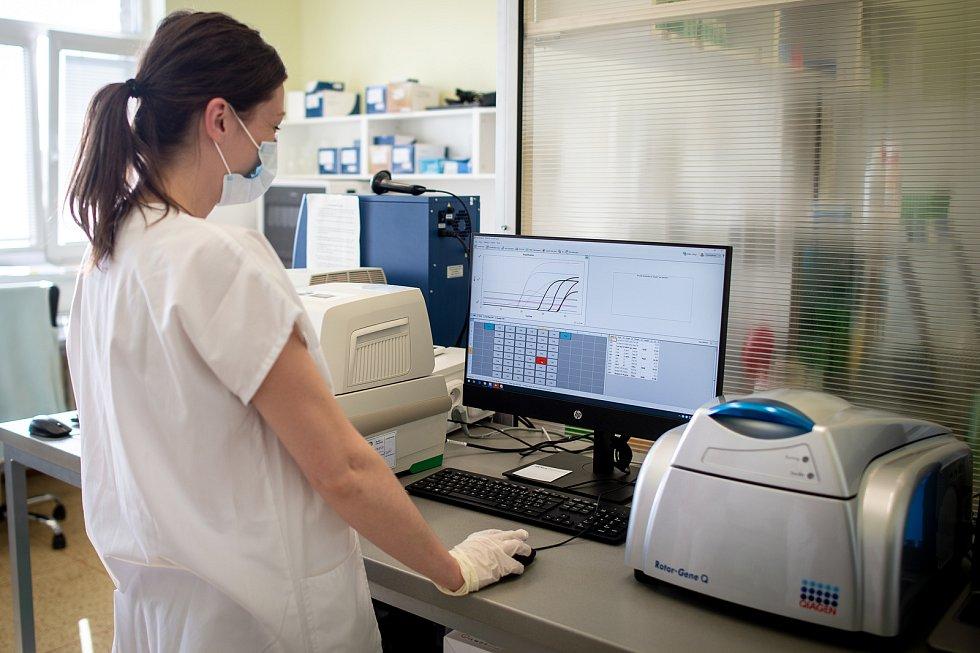 Laboratoře AGELLAB, které jako první soukromé laboratoře v republice obdržely od Státního zdravotního ústavu povolení testovat přítomnost koronaviru. Denně zde vyšetří až 250 vzorků.