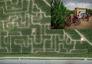 V  kukuřičném labyrintu