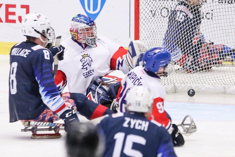 Mistrovství světa v para hokeji 2019, 3. května 2019 v Ostravě. Na snímku (zleva) Wallace Jack (USA), Kudela Martin (CZE).