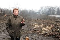 Miroslava Pečková (na snímku) nevěřila vlastním očím, když zjistila, že poblíž jejího domu bylo vykáceno větší množství stromů. V lokalitě se špatným ovzduším by se podle ní mělo přistupovat ke zeleni šetrněji