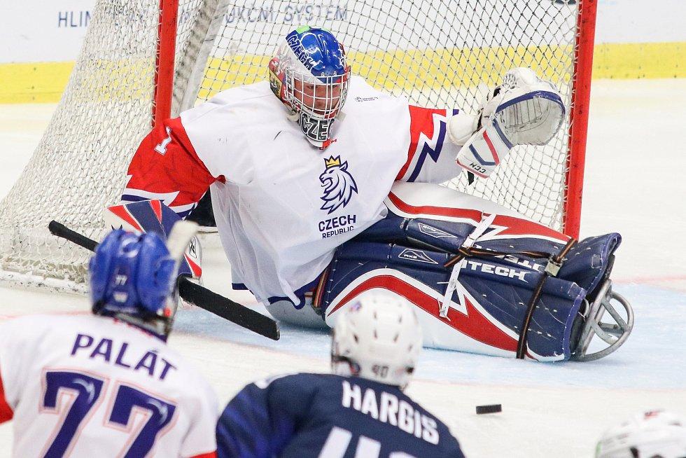 Mistrovství světa v para hokeji 2019, 3. května 2019 v Ostravě. Na snímku Kudela Martin (CZE).