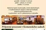 Dáma Pyková Ostrava