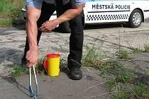 Strážníci sbírají stříkačky a jehly pomocí pinzet.