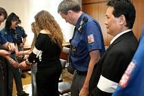 Kilogramy heroinu a pervitinu za miliony korun měly projít rukama tříčlenného gangu, jehož členové v pondělí stanuli před senátem Krajského soudu v Ostravě. Hlavou gangu měl být Vietnamec Dinh Ngoc Le, kterému hrozí až dvanáct let vězení.