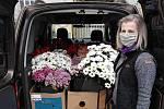 Opavské květinářství Slunečnice rozdalo řezané květiny klientům domovů pro seniory.