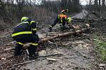 Odstraňování stromů na silnici u Jistebníku (okr. Nový Jičín)