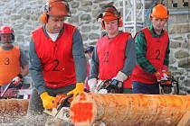 Festival dřeva se konal v sobotu 27. září  na Slezskoostravském hradě.