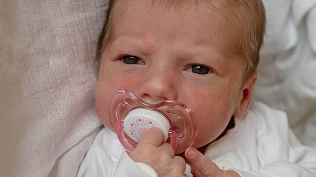 Izabela Šeflová, Ostrava, narozena 19. července 2021 v Karviné, míra 49 cm, váha 3410 g. Foto: Marek Běhan