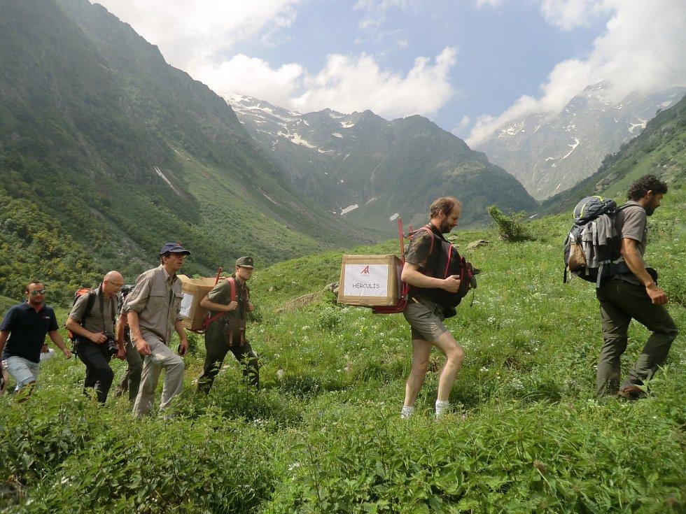 Vynášení orlosupů při vypouštění do přírody.