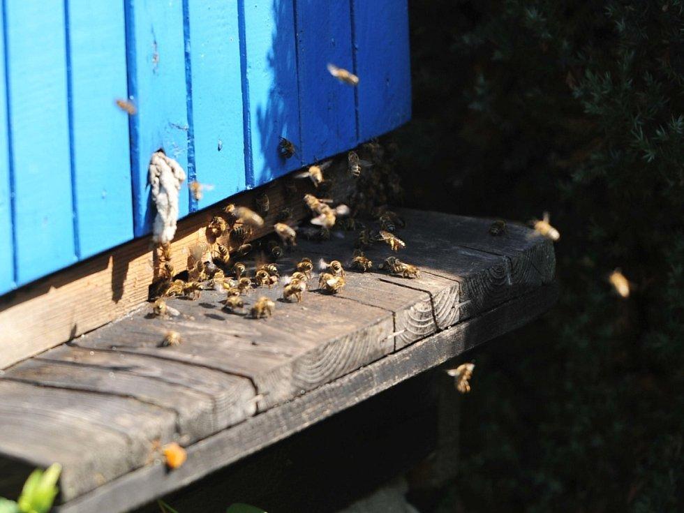 Včelí úly. Najdete je téměř v každé vesnici.