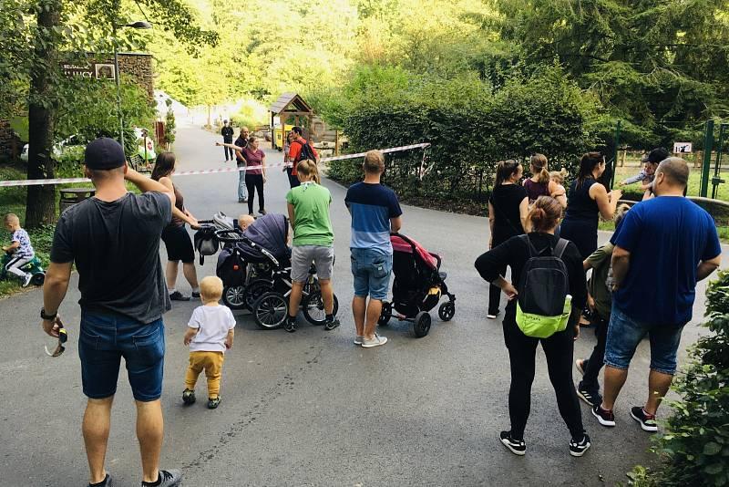 Pracovníci ostravské zoo varují v pátek návštěvníky před útěkem kočkodanů z místního výběhu. Zoo Ostrava, pátek 4. září 2020.