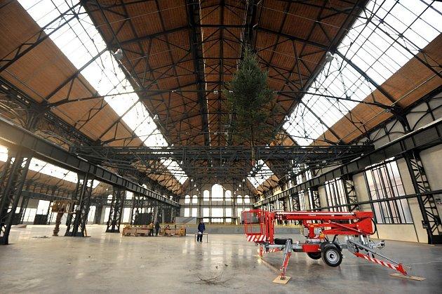 Práce na zavěšení vánočního stromu vostravském Trojhalí.
