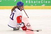 Mistrovství světa v para hokeji 2019, Korea - Česká republika (zápas o 3. místo), 4. května 2019 v Ostravě. Na snímku Kvoch Tomas (CZE).
