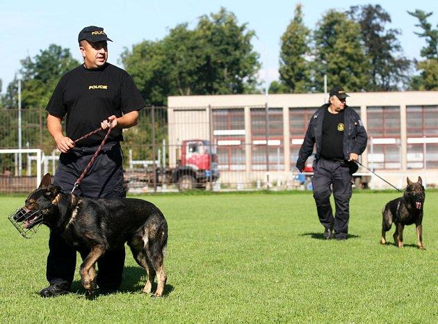 Nejlepší policejní psi a jejich páníčkové z řad severomoravských ochránců zákona tento týden měří své síly v Bartošovicích na Novojičínsku
