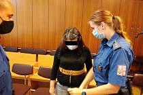 Žena byla za vraždu novorozence odsouzena k sedmnácti rokům vězení.