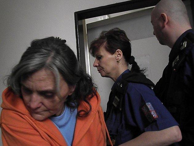 SOUD. Matce, která je obžalovaná z usmrcení syna, hrozí osm až šestnáct let vězení.