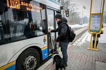 Třicetiletý nevidomý Jakub Starek se svým vodicím psem Colette.