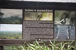 Pavilon slonů v ostravské ZOO.