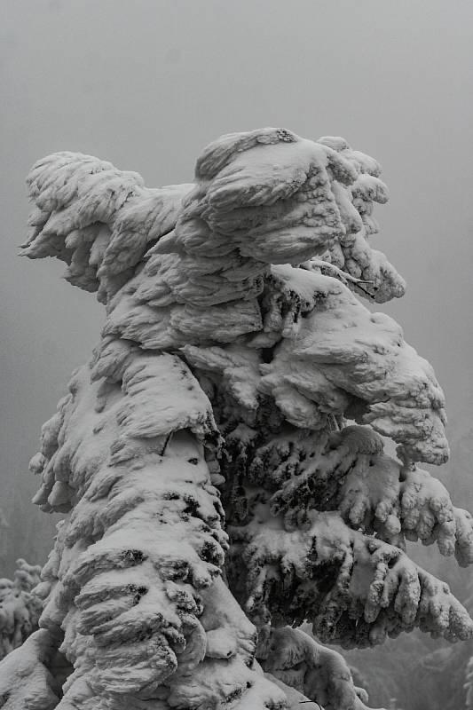 Zamrzlá Stezka Valaška na Pustevnách.