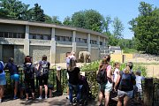Ostravská zoo v sobotu opět přivítala masy lidí. Někteří se pro návštěvu rozhodli i kvůli novému slonímu samci z Francie, jiní o novici neměli ponětí, ani když jej odděleného od stáda sami viděli.