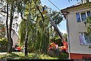 Odstranění silné nalomené větve (průměr 40 cm) na vrbě v Ostravě-Kunčičkách ve Vratimovské ulici.