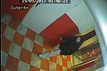 Policisté mají k dispozici záběry z domovních kamer.