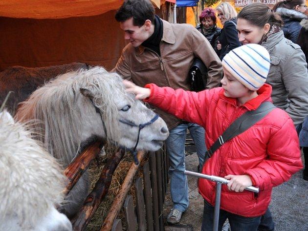 Na Masarykově náměstí v srdci Ostravy se konají vánoční trhy. Kromě prodejních stánků se zde nachází dřevěný betlém, stan se živými zvířaty nebo stan s ukázkami tradičních řemesel.