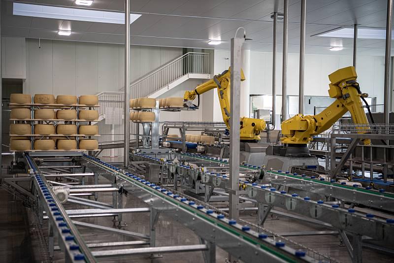 Robotizovaný sklad sklad sýrů společnosti Gran Moravia, 12. srpna 2021 v Cogollo del Cengio v provincii Vicenza, Benátsko, Itálie. Roboti bochníky připravují na dřevěné police, ty následně putují do skladu.