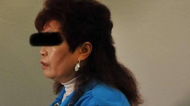 OBĚŤ. Vietnamská prodejkyně naštěstí utrpěla jen lehká zranění. U soudu řekla, že ji po bodnutí stále bolí záda.