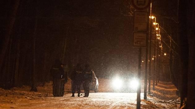 Mrtvý muž byl ve středu nalezen v areálu Bělského lesa v Ostravě. Na snímku policisté, kteří společně s dalšími kolegy prohledávali okolí.