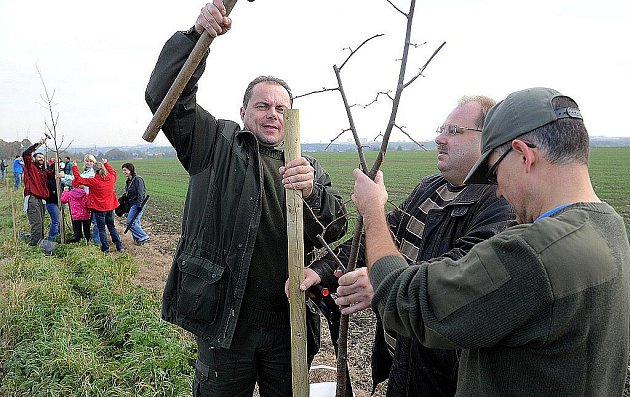 Ostrava se zapojila do rekordu v sázení stromů. Ve Svinově úředníci vlastnoručně vysadili sto lip.