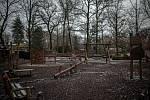 Zoo Ostrava, 6. únor 2021