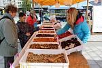 Farmářské trhy v Havířově