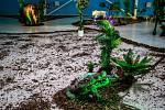 Poslední přípravy na ČokoFest, který se koná od pátku 1. do neděle 3. listopadu na ostravském výstavišti Černá louka.