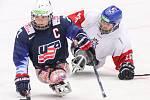 Mistrovství světa v para hokeji 2019, 3. května 2019 v Ostravě. Na snímku (zleva) Pauls Josh (USA), Novotny Miroslav (CZE).