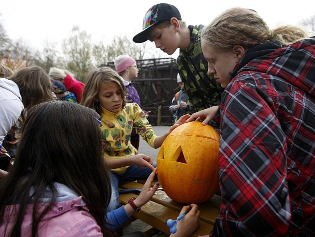 Oslavy svátku Halloween v ostravské zoo.