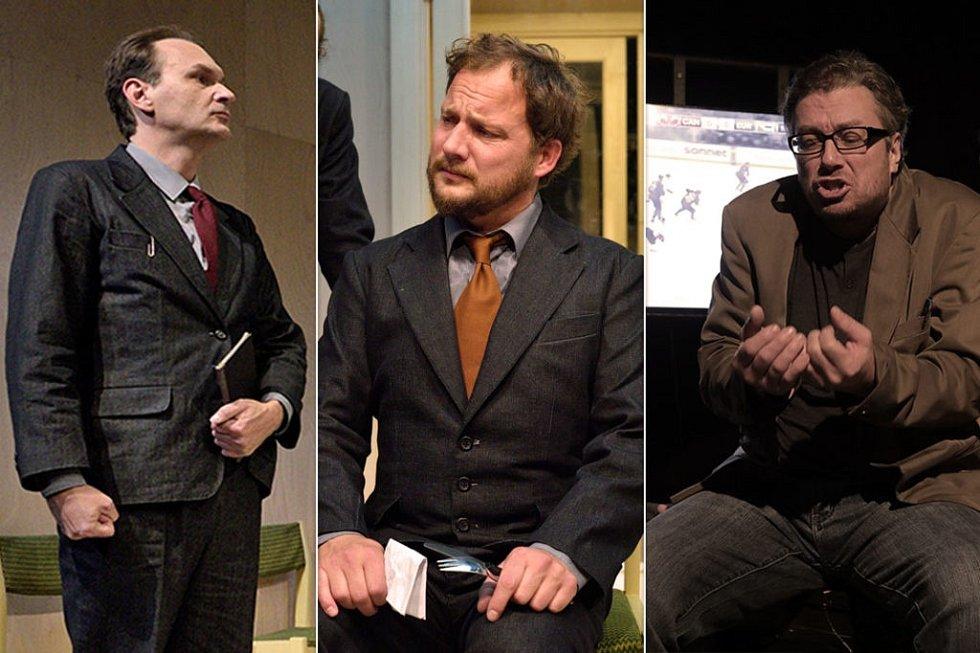 Nominace vkategorii činohra muži putují do Komorní scény Aréna, a to pro Marka Cisovského a Josefa Kalužu. Třetím nominovaným je David Viktora zNárodního divadla moravskoslezského vOstravě.