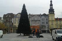 Vánoční strom na Masarykově náměstí v centru Ostravy už stojí.