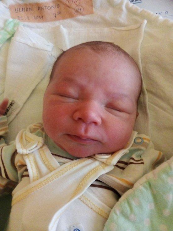 Antonio Ulman, Opava, narozen 22. února 2021, míra 51 cm, váha 3 800 g. Foto: Pavla Hrabovská