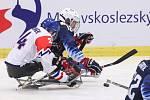 Mistrovství světa v para hokeji 2019, 3. května 2019 v Ostravě. Na snímku (zleva) Safranek Zdenek (CZE), Farmer Declan (USA).